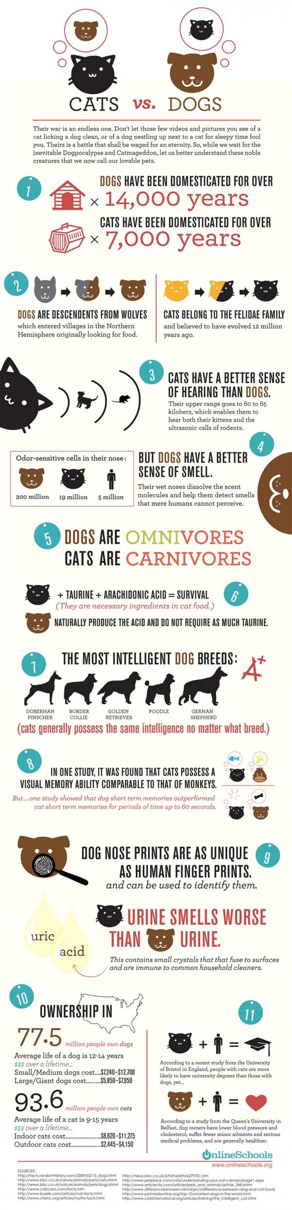 Cani e Gatti a confronto in una infografica