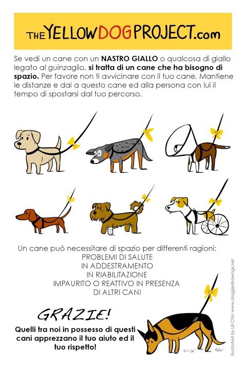 The Yellow Dog Poject, imparare a rispettare gli spazi