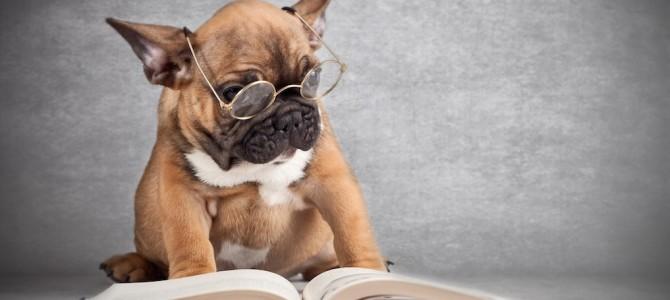 4 libri firmati Think Dog e dedicati al tuo migliore amico