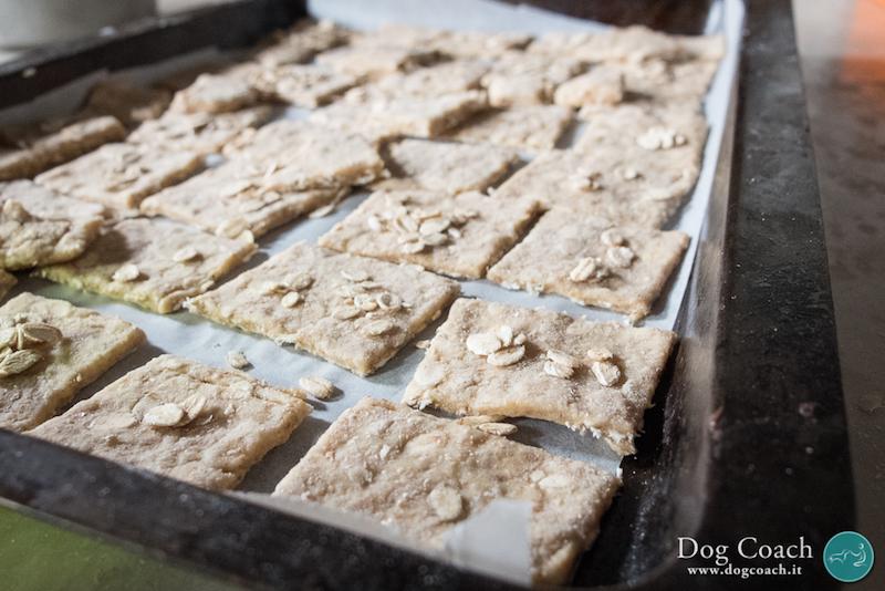 ricetta-biscotti-cane-integrali-avena-dogcoach-mattiamarasco-2