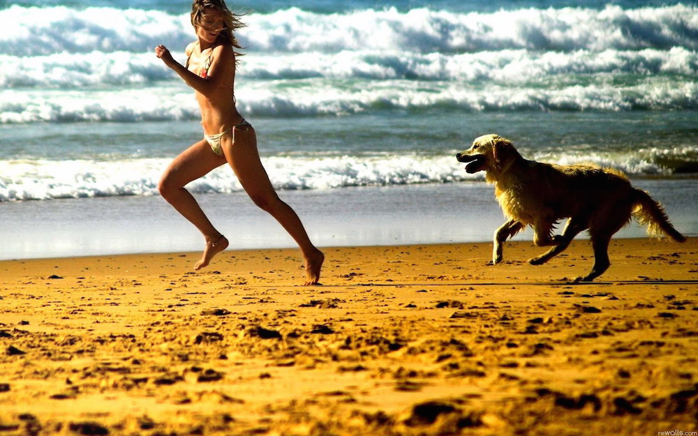 spiaggia libera cane